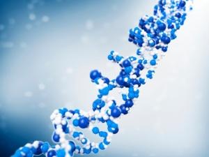 DNA-kedja